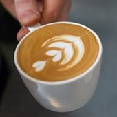 Intimate Latte Art Lessons